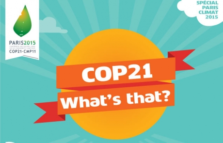 Cop21: What's that?